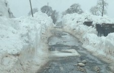 Easter Stages Rally Cancelled